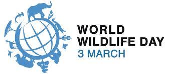 Международен ден на дивата природа