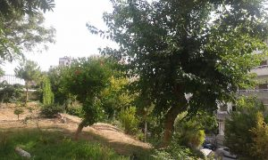 Nature_Gardens_in_Syria_1