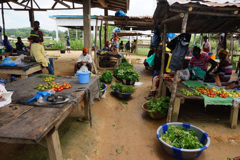 11-11-2014Farming_Liberia