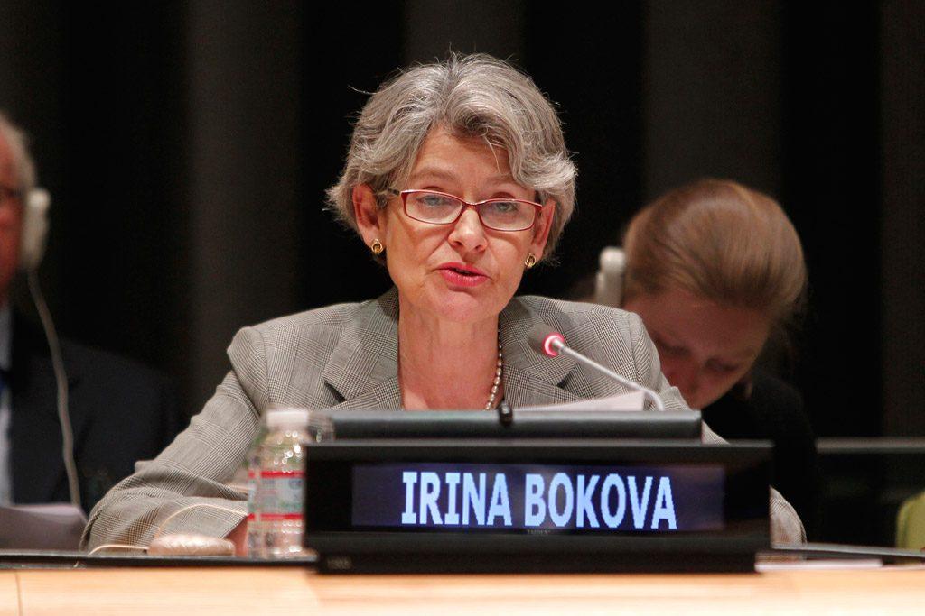 UN Photo/Devra Berkowitz
