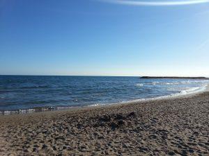 beach-745088_960_720