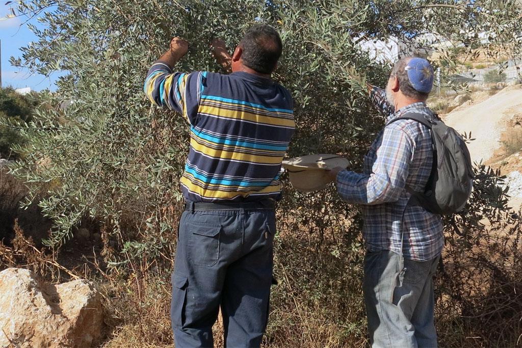 11-11-2014Israel_Palestine