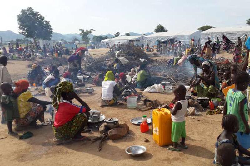 03-03-2015Nigeria_Cameroon