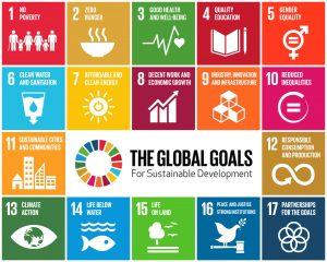 SDGs-GlobalGoalsForSustainableDevelopment-05 (1)