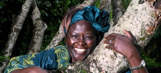 Снимка: UNEP